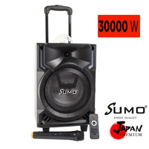 SUMO 8-inch Professional Active Party Trolley Speaker 30000W - SM-8801