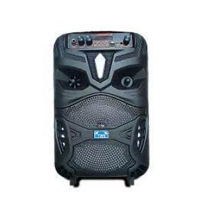 TWS GZ-P55 Wireless Bluetooth Portable HIFI Speaker With Microphone / Super Bass Subwoofer / LED Light / FM Radio