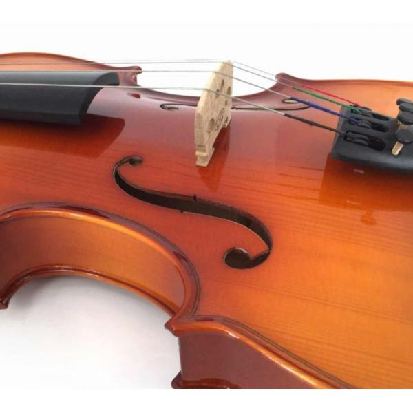 Kinglos 4/4 Full Size Solid Wood Acoustic Violin with Case - PJB-1002